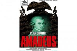 amadeus_cover